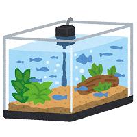 水槽 - アイキャッチ